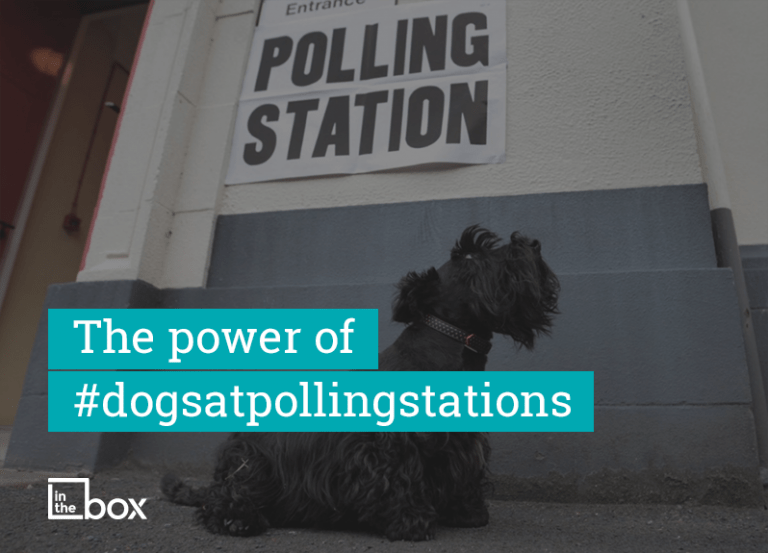 The power of #dogsatpollingstations