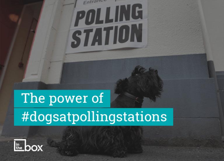 The power of #dogsatpollingstations